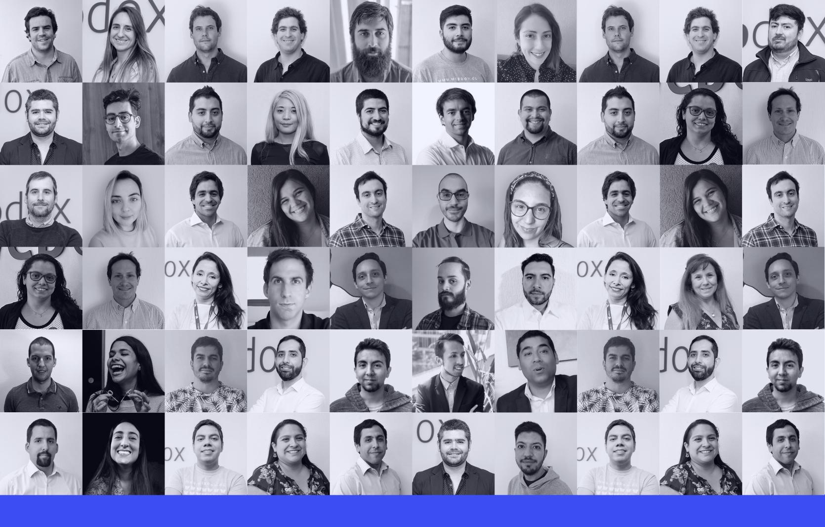 webdox-team-2022
